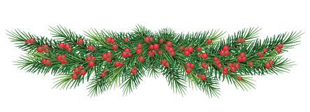 Long garland of Christmas tree branches and red berries. Vector Royalty Free Stock Images