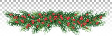 Long garland of Christmas tree branches and red berries. Vector Royalty Free Stock Image