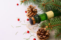 Christmas garland and a bottle of champagne. In the snow before Christmas, or New Year Stock Images