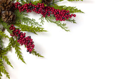 Christmas Garland with Pine Cones and Berries  on white Stock Photography