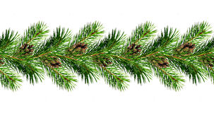 Christmas garland from pine tree twigs and cones royalty free stock images