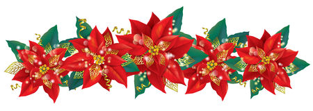 Christmas garland of poinsettia Stock Images