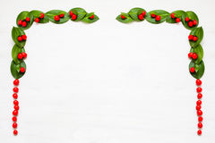 Christmas garland with red winter berries Stock Images