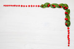 Christmas garland with red winter berries Royalty Free Stock Photos