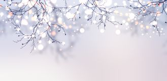 Christmas garland sparkles on the tree banner. Light silver winter background. Stock Photos