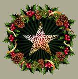 Christmas garland with star and pinecones Royalty Free Stock Image
