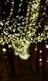 Christmas garland on trees Stock Image