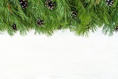 Christmas garland with undecorated pure green natural fir branch. Es with cones isolated on white background Stock Images