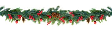 Christmas garland on white. Christmas garland of evergreen tree isolated white background stock image