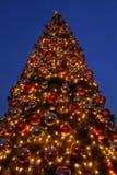 christmas giant tree Στοκ εικόνα με δικαίωμα ελεύθερης χρήσης