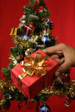 Christmas gift. Hand holding a Christmas gift with Christmas tree in background, focus is on gift Stock Photography