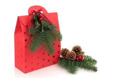 Christmas Gift Bag. In red with star design and blue pine fir leaf sprig, pine cone with holly and red berry decorative sprays over white background Royalty Free Stock Photos