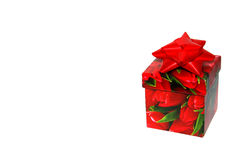 Christmas gift box Stock Photos