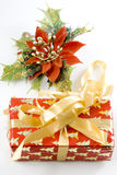 Christmas Gift box and mistletoe stock image