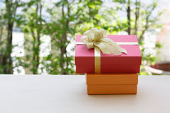 Christmas gift box  in nature background Stock Images