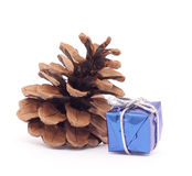 Christmas gift box and pine cone on white backgro Stock Photos