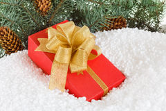 Christmas Gift box with ribbon in snow  under pine tree Royalty Free Stock Photography