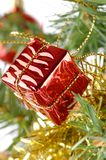 Christmas Gift Box on Tree Royalty Free Stock Images