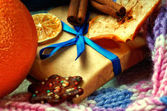 Christmas gift box, winter scarf, dried fruits and cookie Stock Images