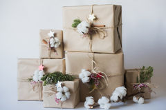 Christmas gift boxes with flowers and decorative objects Eco cotton, cinnamon, spruce branches and jute rope hank over white backg Stock Photo