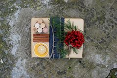 Christmas gift boxes presents scene with pine tree, deer and xmas decorations stock images