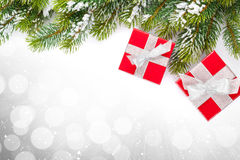 Christmas gift boxes and snow fir tree Royalty Free Stock Image