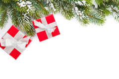 Christmas gift boxes and snow fir tree Royalty Free Stock Photos