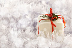 Christmas gift in Freezing Cold Winter Background Royalty Free Stock Photos