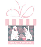Christmas gift and funny rabbits Royalty Free Stock Photos