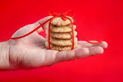 Christmas gift - gingerbread cookies Stock Photos