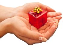 Christmas gift giving Royalty Free Stock Photo