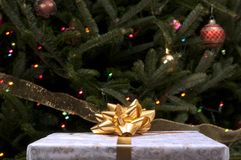 Christmas gift with gold bow in front of tree Stock Image
