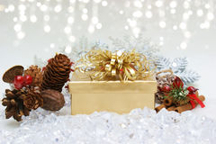 Christmas gift nestled in ice Stock Photos