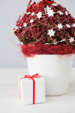 Christmas gift parcel and a Christmas decorated red palnt Stock Photo