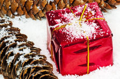 Christmas gift in snow Stock Image