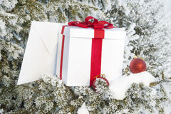 Christmas gift in a snowy forest near the pine Royalty Free Stock Image