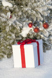Christmas gift in a snowy forest near the pine Royalty Free Stock Photography