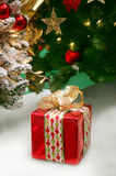 Christmas gift and trees Royalty Free Stock Photography