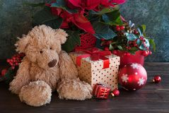 Christmas gift with winter plants. Christmas decor with gift for children Stock Photo
