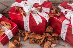 Christmas gifts. Christmas dragon with beech leaves and branches Royalty Free Stock Image
