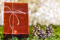 Christmas gifts. Christmas greetings, decoration and symbol xmas Royalty Free Stock Photos