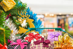 Christmas gifts and presents in shopping trolley cart with christmas tree background. Stock Photos