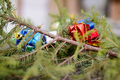Christmas gifts under fir branch Stock Photos