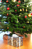 Christmas gifts. Under the tree Stock Image