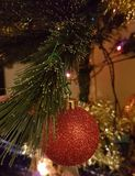 Christmas gildings on christmas tree. Christmas gildings on Christmas pine illuminated with festive lights Stock Image
