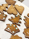 Christmas ginger biscuit Royalty Free Stock Photo