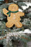 Christmas ginger bread boy Stock Images