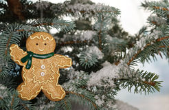 Christmas ginger bread boy  Royalty Free Stock Image