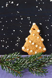 Christmas gingerbread. Stock Images