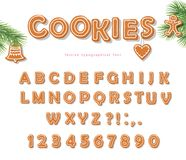 Christmas Gingerbread Cookie font. Biscuit letters and numbers. Vector EPS10 Stock Photos